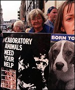 Animal rights activists are targeting Huntingdon Life Sciences