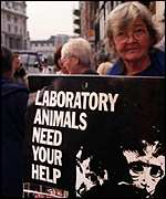 Animal rights campaigning lady