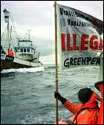 Greenpeace and norway whaler PA