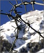 Barbed wire at site of Davos World Economic Forum