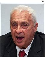 Ariel Sharon, Likud leader