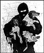 ALF member with stolen dogs