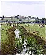 upper brede valley