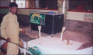 Cobras in the laboratory