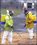 Catterick Racecourse staff spray disinfectant on hay