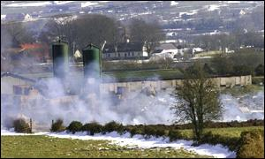 One of the animal slaughter fires at Meigh in Armagh