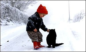 Having a cat may help protect children against asthma