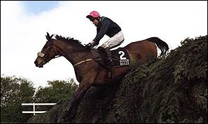 Rough Quest ridden by Mick Fitzgerald
