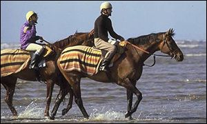 Red Rum on Southport beach