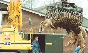 Pre-emptive slaughter in the Netherlands 16 March 2001