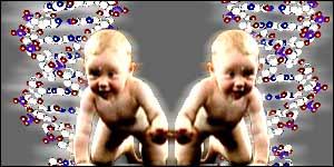 Chaturbate clone
