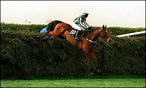 Lord Gyllen takes on Beechers Brook on the way to victory in 1995