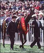 Red Rum leads the Grand National parade
