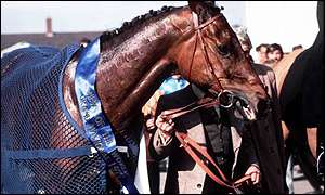 Red Rum after his third National win in 1977