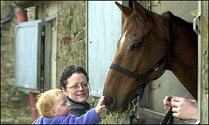 One of Red Marauder's younger fans gives the National winner a pat on the nose
