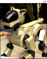 Aibo ERS-210, the second-generation of the Sony popular pet robot Aibo dog