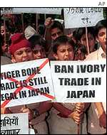 Ivory protests in New Delhi