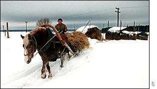 Russian farmer with horse in the snow