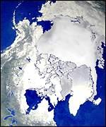 u0026quot arctic cat zr 600 engine diagram   arctic cat spirit