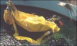 Chippie bagged and ready to go