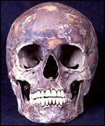 _1323485_skull150.jpg
