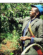 A coffee farmer in Kenya