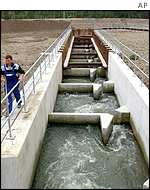 The largest fish ladder in Europe, built in the Rhine river at the water turbine of Iffezheim.