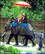 Elephant carrying priest