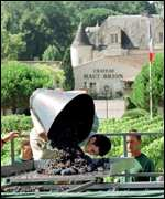 Vineyard workers at a French chateau