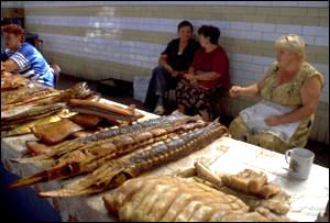 Fishmarket in Caspian Sea area