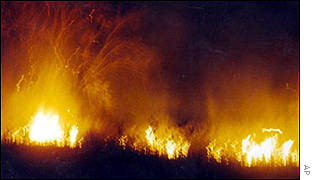 Forest fire in Riau, 2000