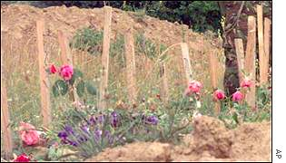 Mass grave in Kosovo