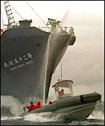 Greenpeace activists and the Japanese whaling ship Toshi