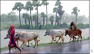 India monsoon AP