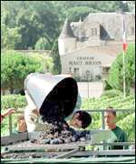 Making wine at a French chateaux