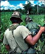 Bolivian soldiers searching for illegal coca crops