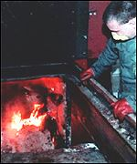 A cow suspected of having BSE is incinerated