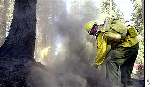 Firefighters contain hotspots from a fire near Emigrant Gap, California