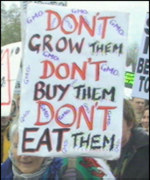GM crop protester