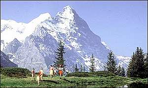A tranquil view of the Eiger