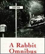 Rabbit book cover