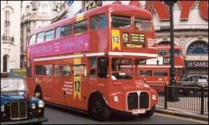 The route 12 London bus