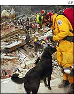 Dog and handler searching WTC