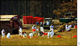 Workers place debris into bins for sorting at the crash site of United flight 93 in Shanksville, Pa