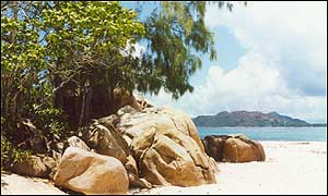 Beach in the Seychelles  BBC