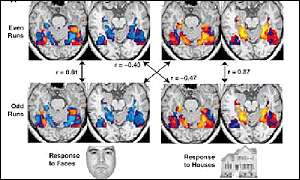 Brain scans show how people react to seeing different images (c) Science