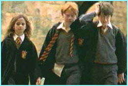 The gang: Hermione, Ron and Harry