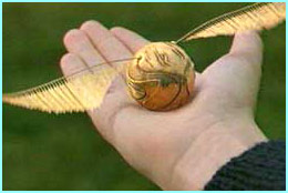 Harry holds the Golden Snitch
