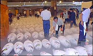 Frozen tuna await buyers at Tokyo's fish market, BBC