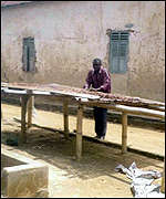 A cocoa farmer drying out his beans at Sefwi